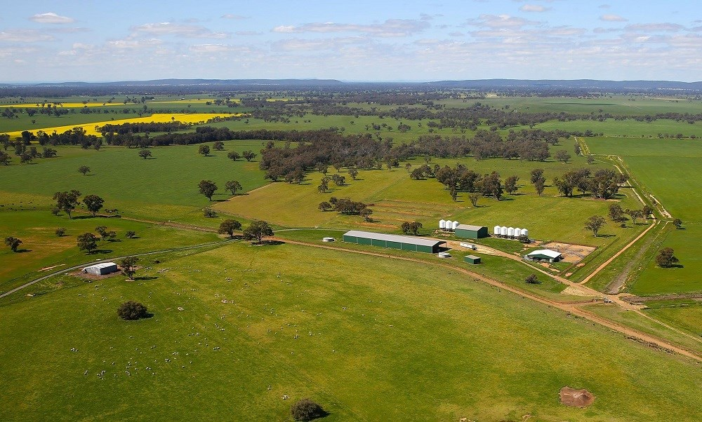 Property For Sale 449 Willawang Road Warroo NSW 2871 1