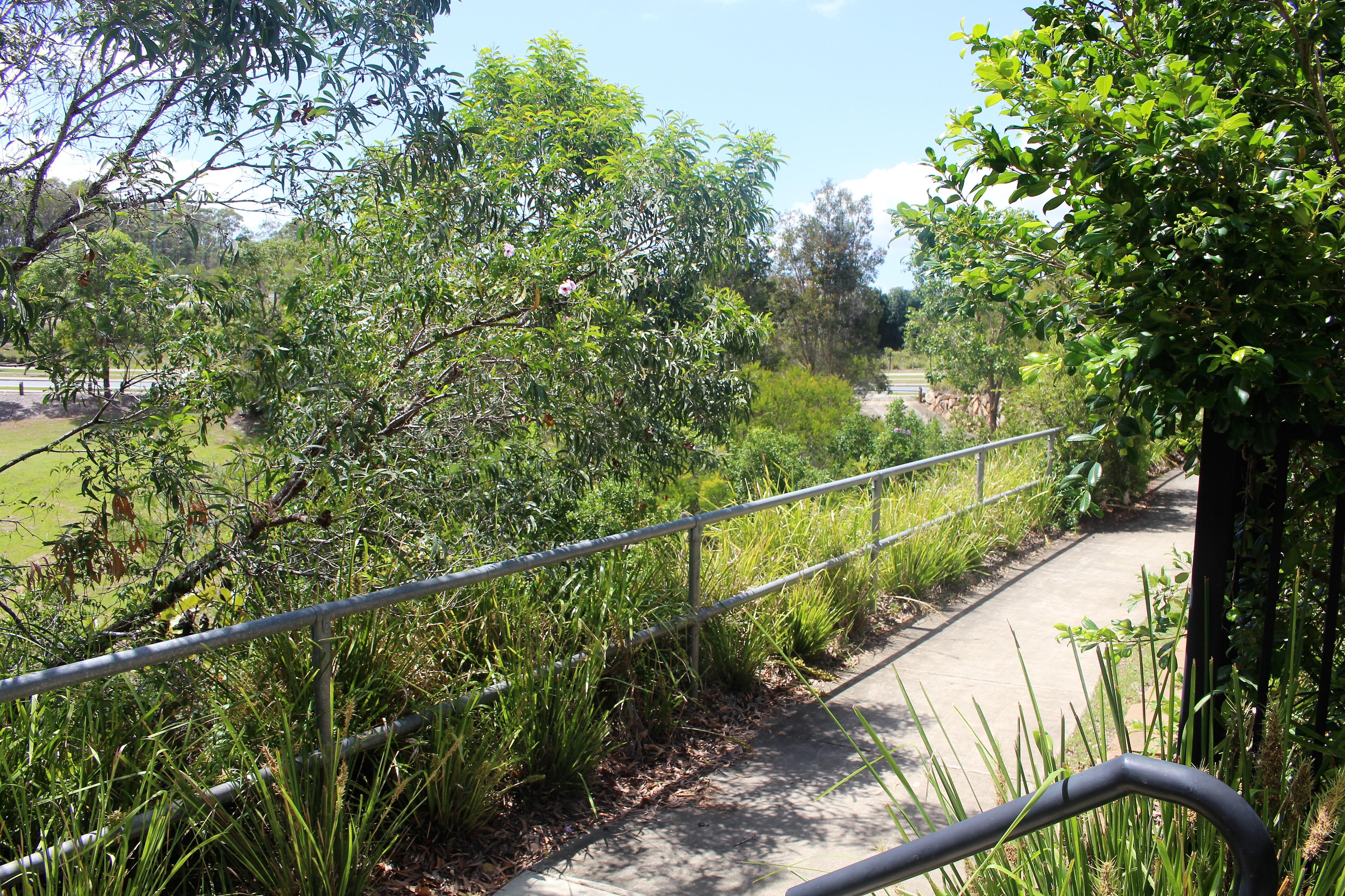Property For Sale 54/115 Mango Hill Boulevard East Mango Hill QLD 4509 5