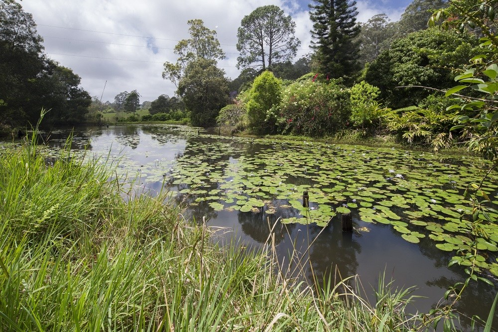 Property For Sale 22 Forbes Close Bonville NSW 2450 17
