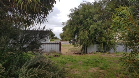Property For Sold 46 Nelson Street Marion Bay SA 5575 5