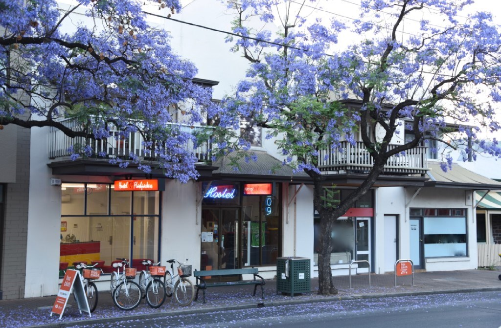 Private Business For Sale 109 Carrington Street Adelaide SA 5000