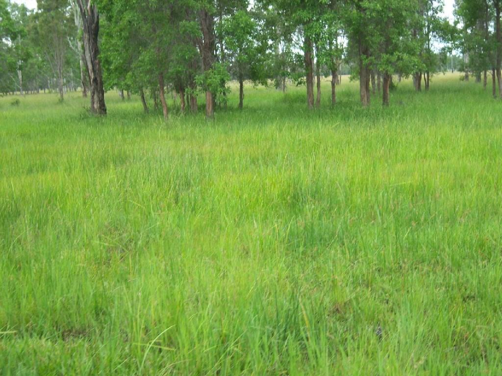 Property For Sale Off Mount Woowoonga Road, Via Biggenden Woowoonga QLD 4621 4