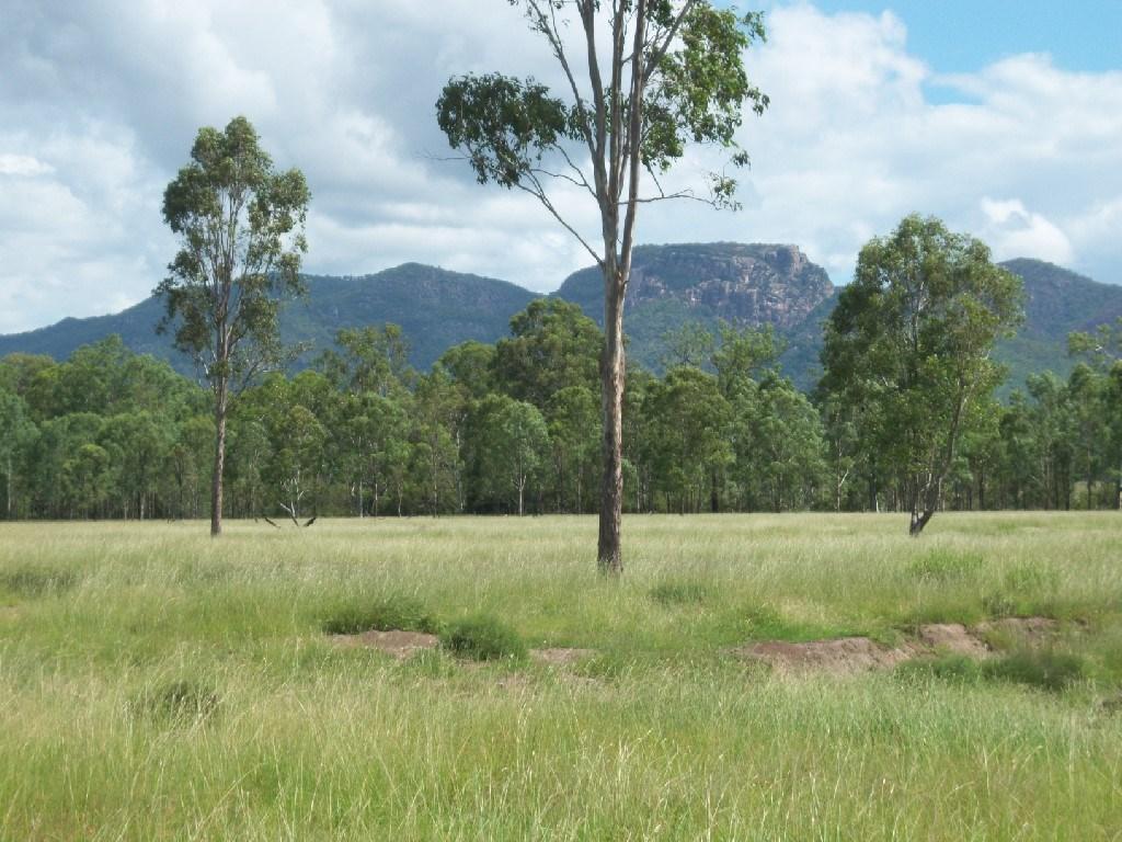 Property For Sale Off Mount Woowoonga Road, Via Biggenden Woowoonga QLD 4621 8