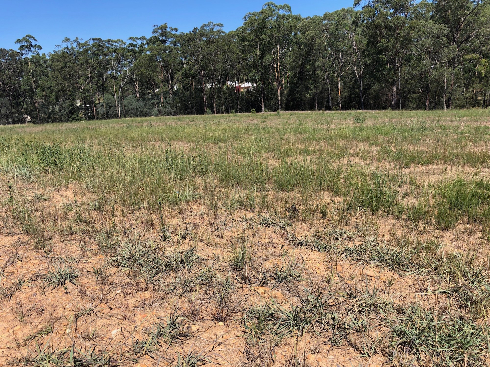 Property For Sale 38 Greenhills Drive Silverdale NSW 2752 3