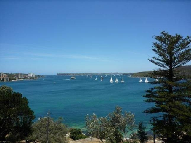 32/29 The Crescent Manly NSW 2095