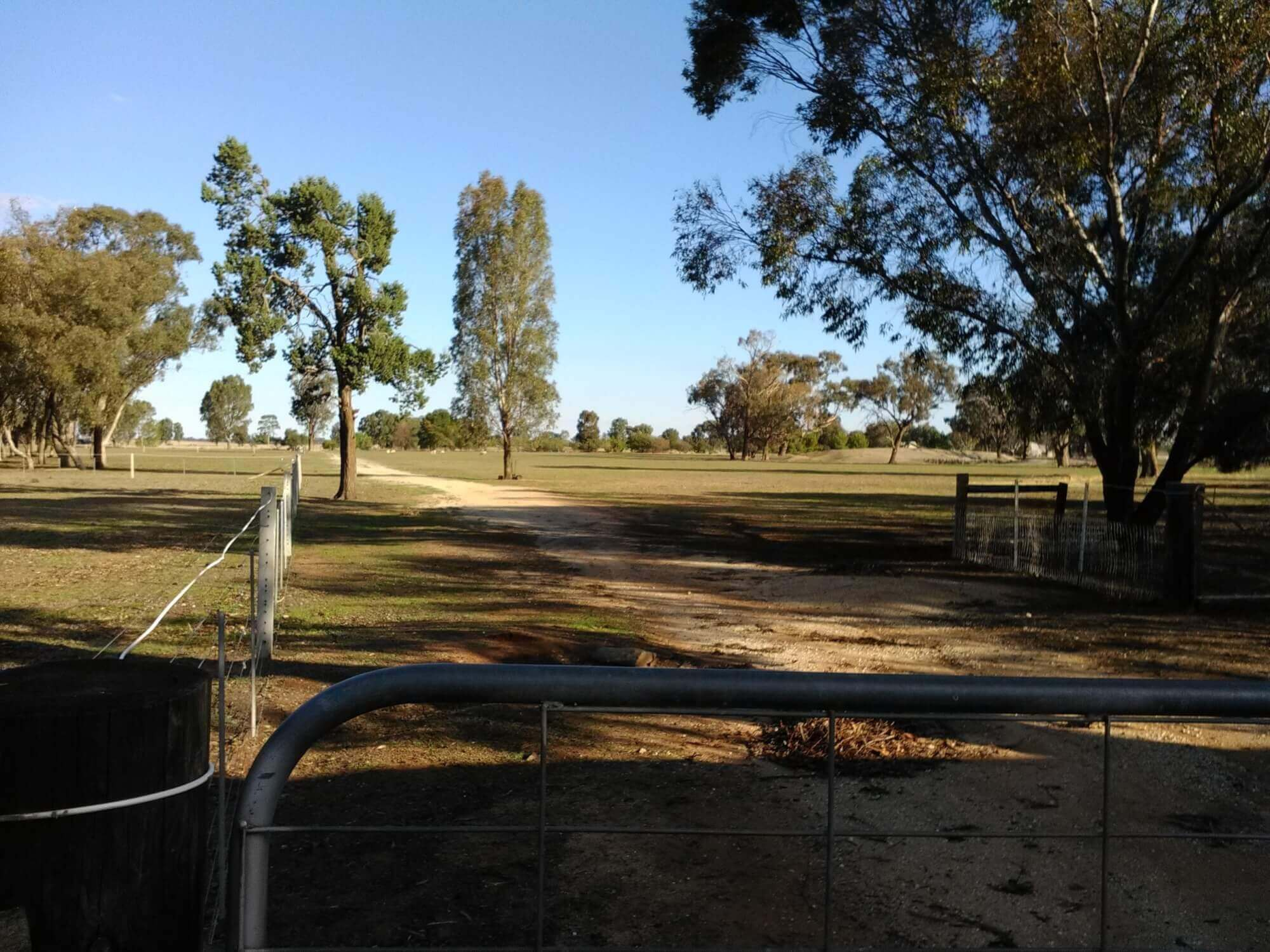 Property For Sale 176 Cobram Road Berrigan NSW 2712 2