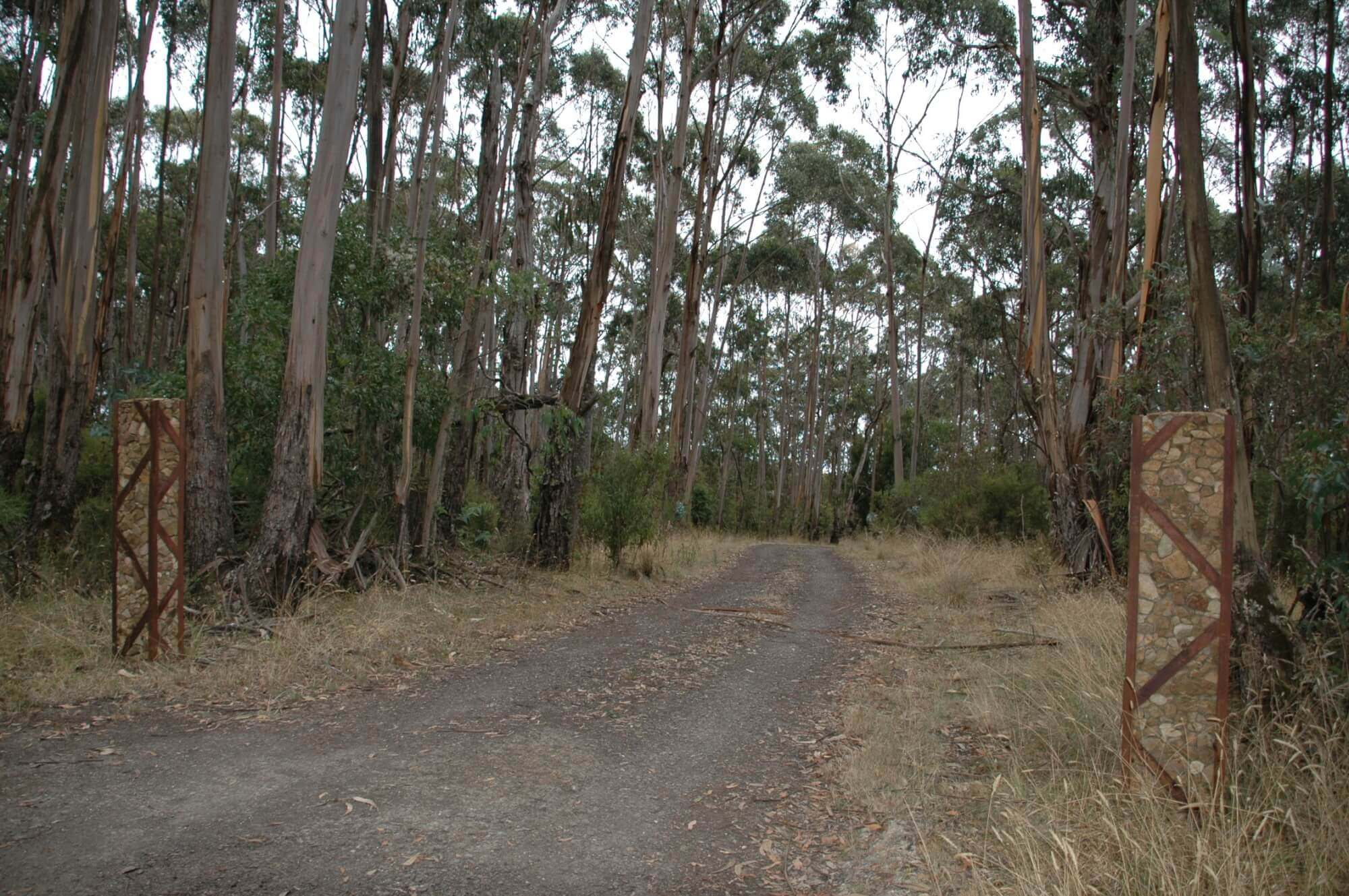 Property For Sale 90 Sincocks Road Deans Marsh VIC 3235 10