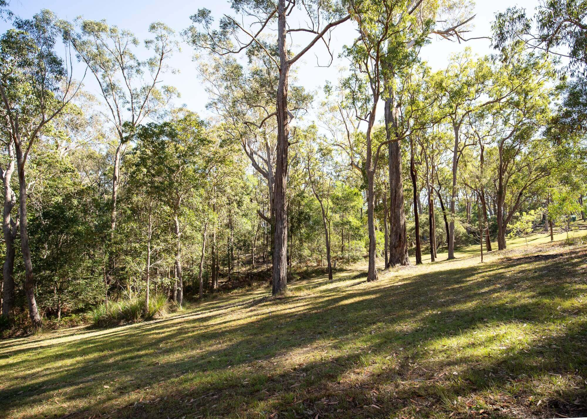 Property For Sale 265a Crisp Drive Ashby Heights NSW 2463 21