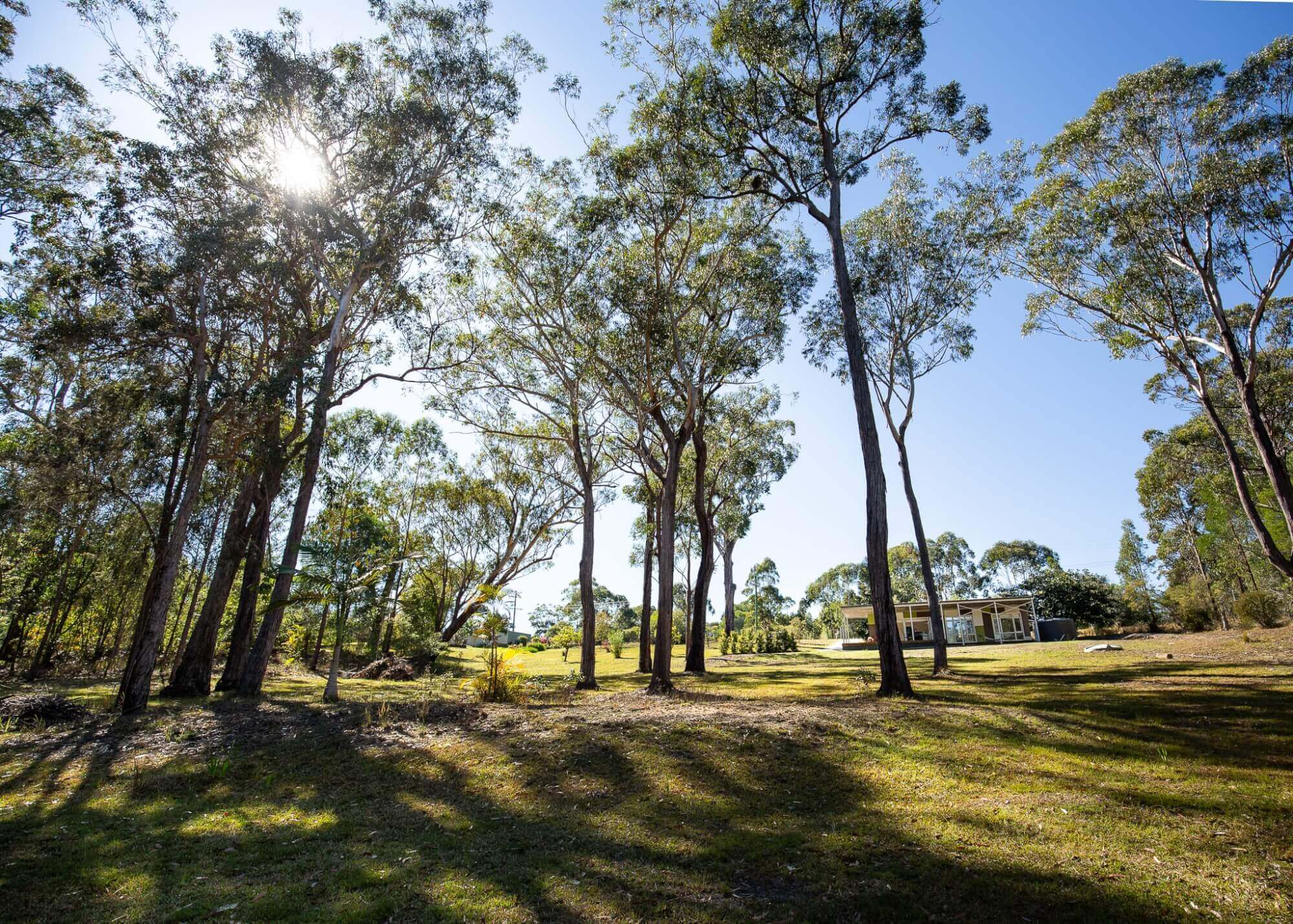 Property For Sale 265a Crisp Drive Ashby Heights NSW 2463 22
