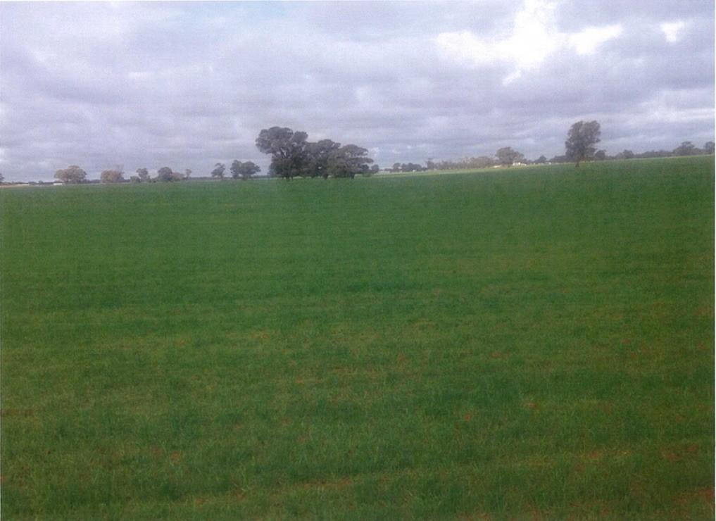 Cnr Twenty Four Lane and Hillside Road Moama NSW 2731