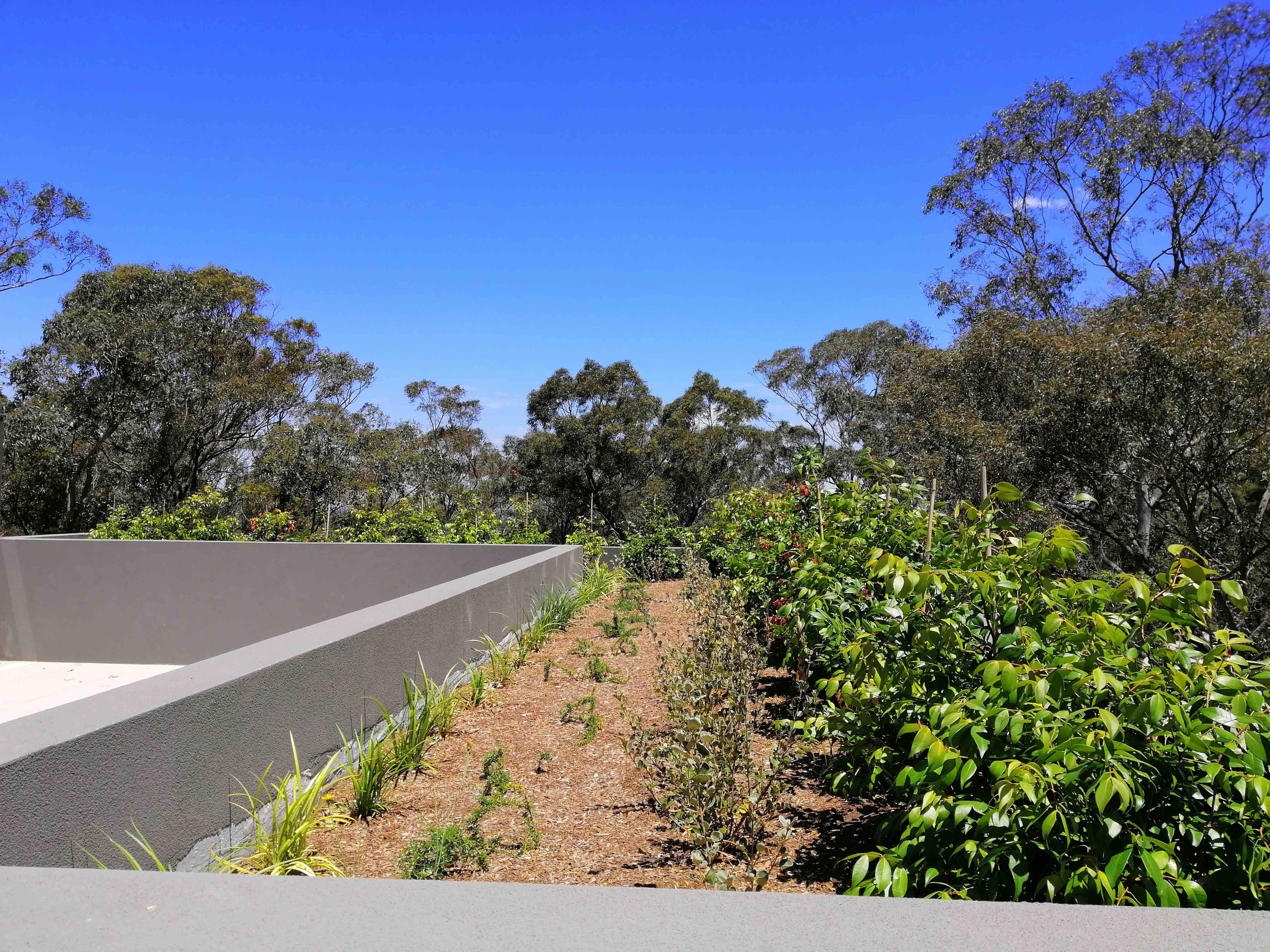 Property For Sale Turramurra 2074 NSW 2