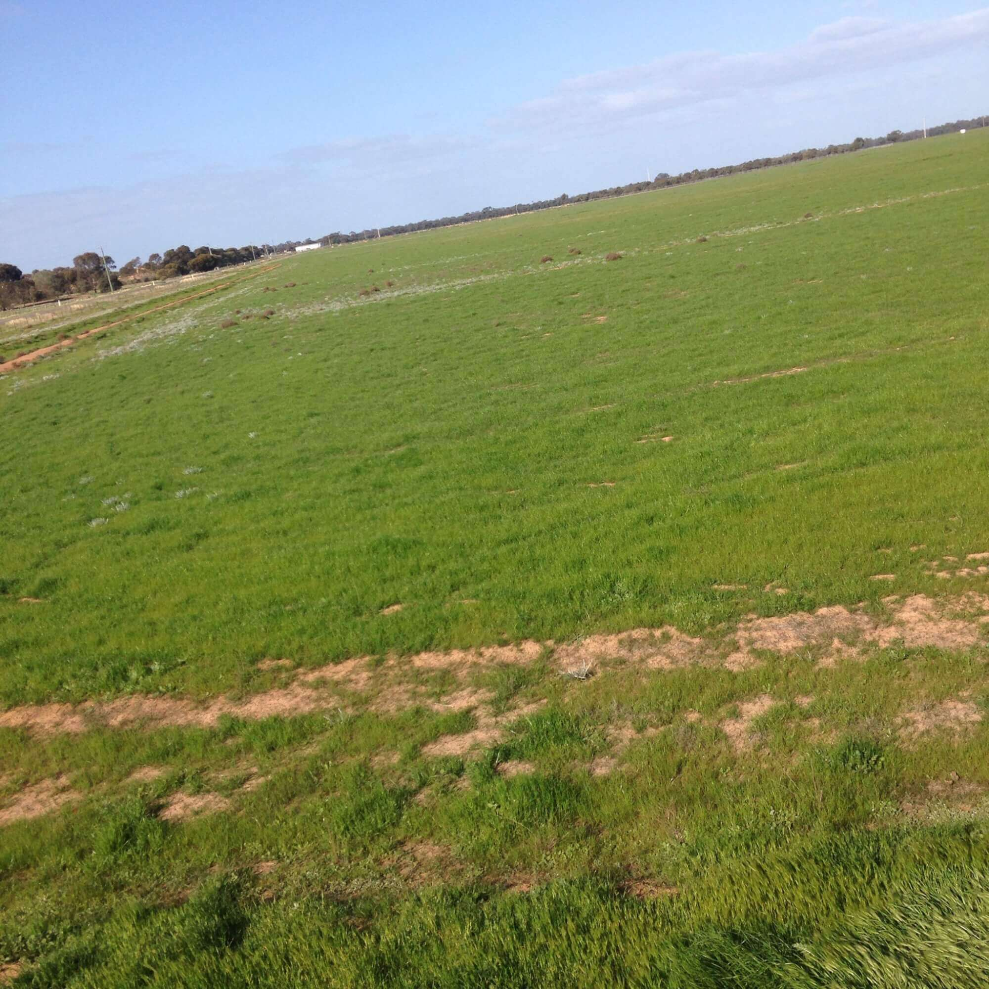Private Commercial For Sale Lot 590 Hillside Road Moama NSW 2731