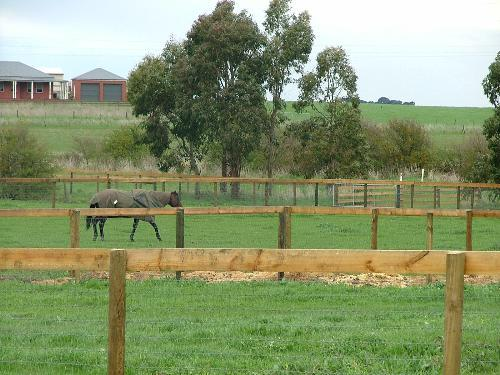 Property For Sale Warrnambool 3280 VIC 8