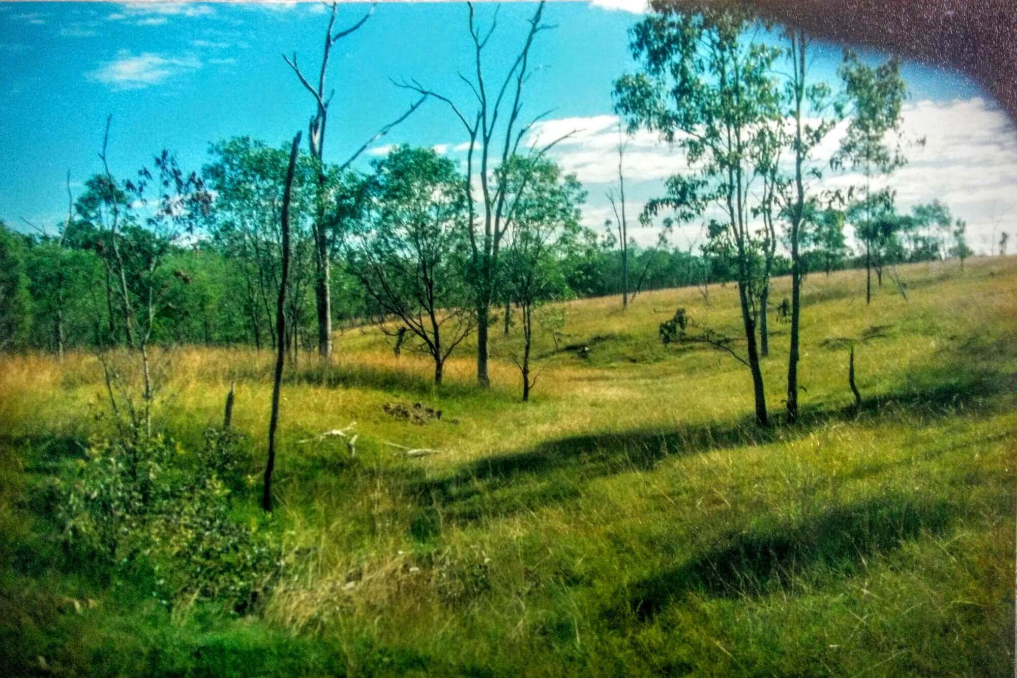 Property For Sale Horse Camp 4671 QLD 4