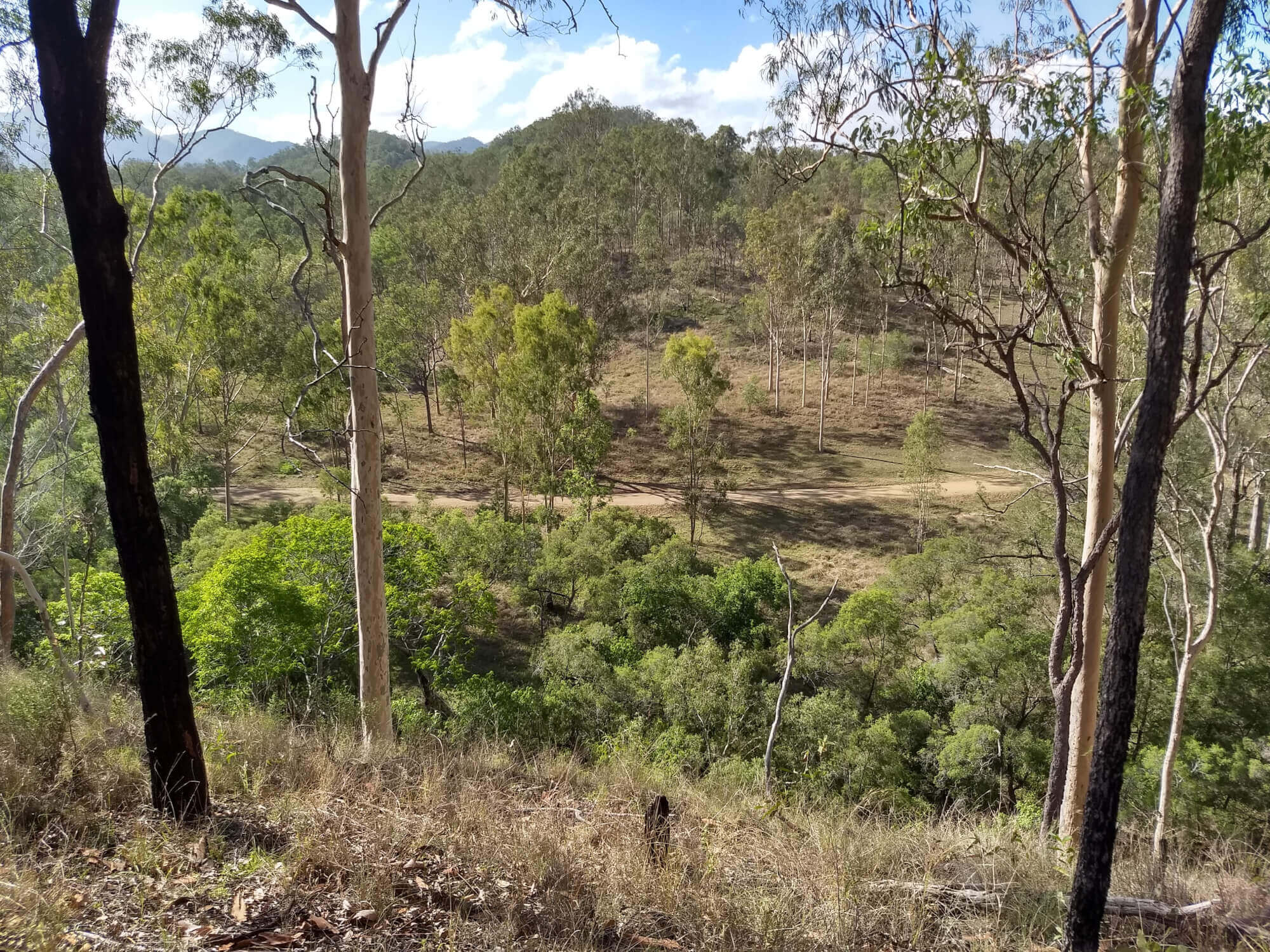 Property For Sold Boyne Valley 4680 QLD 15