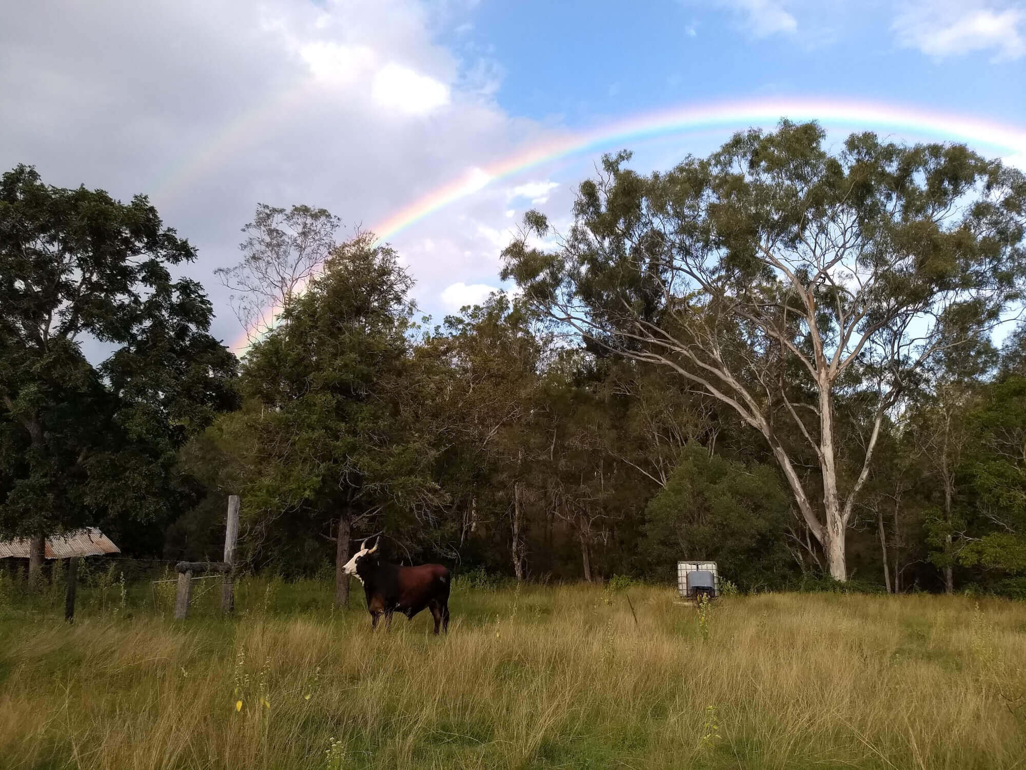 Property For Sold Boyne Valley 4680 QLD 2