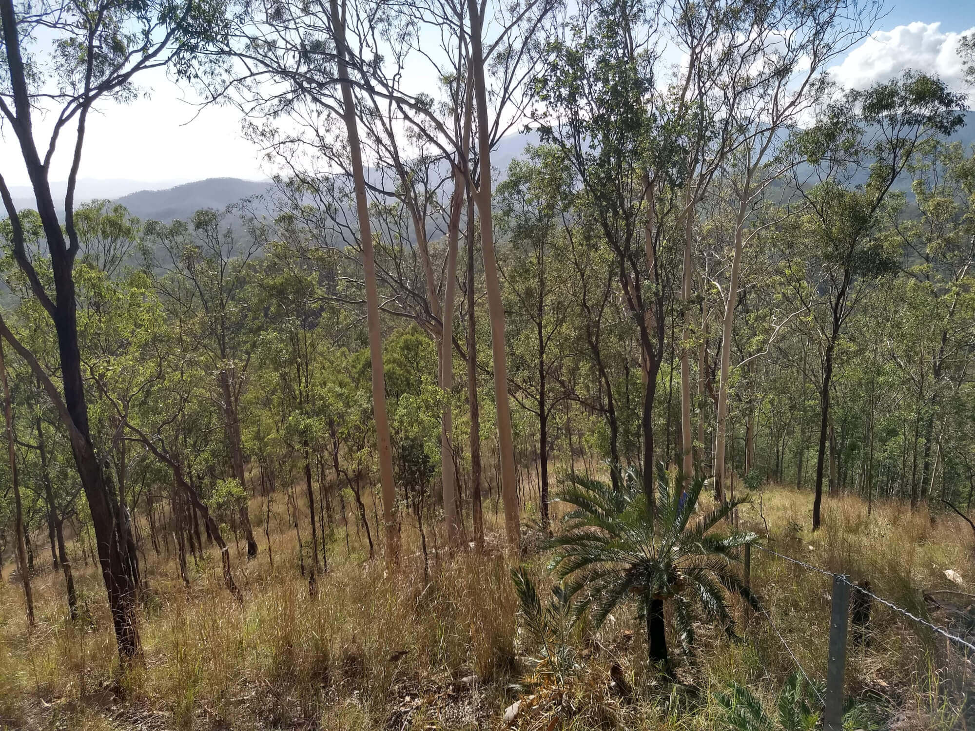 Property For Sold Boyne Valley 4680 QLD 16