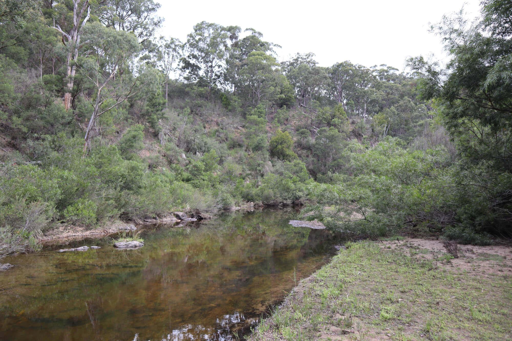 Property For Sale 533 Burragate Road Burragate NSW 2550 25
