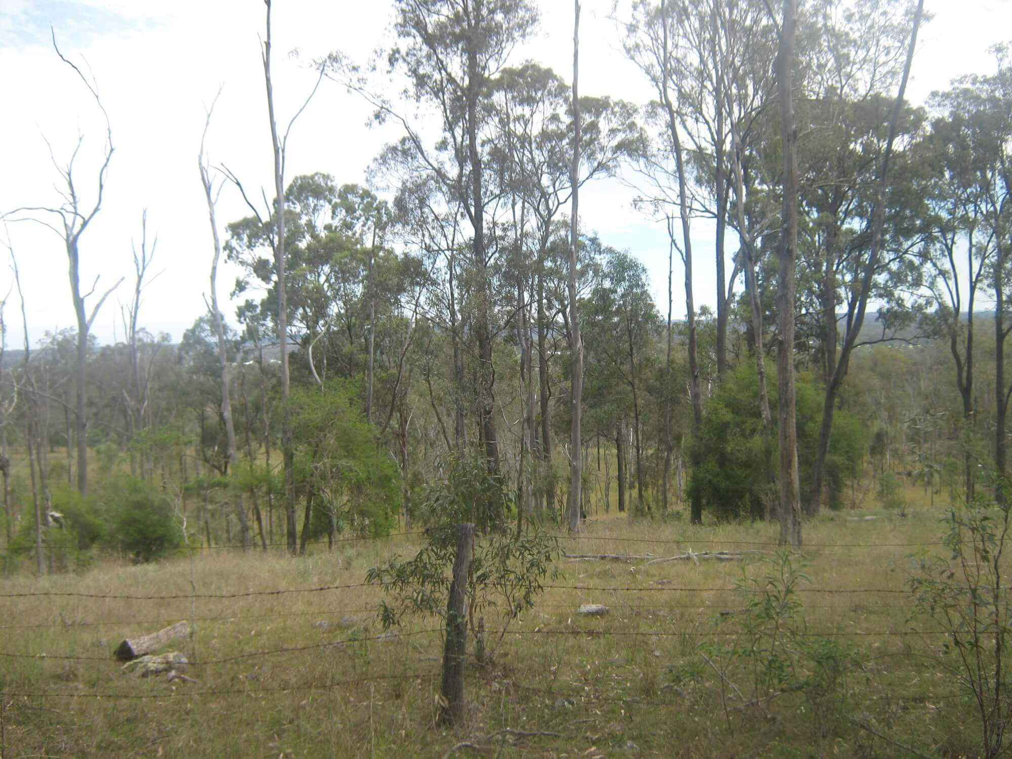 Property For Sale 75 The Heights road Glan Devon QLD 4615 10