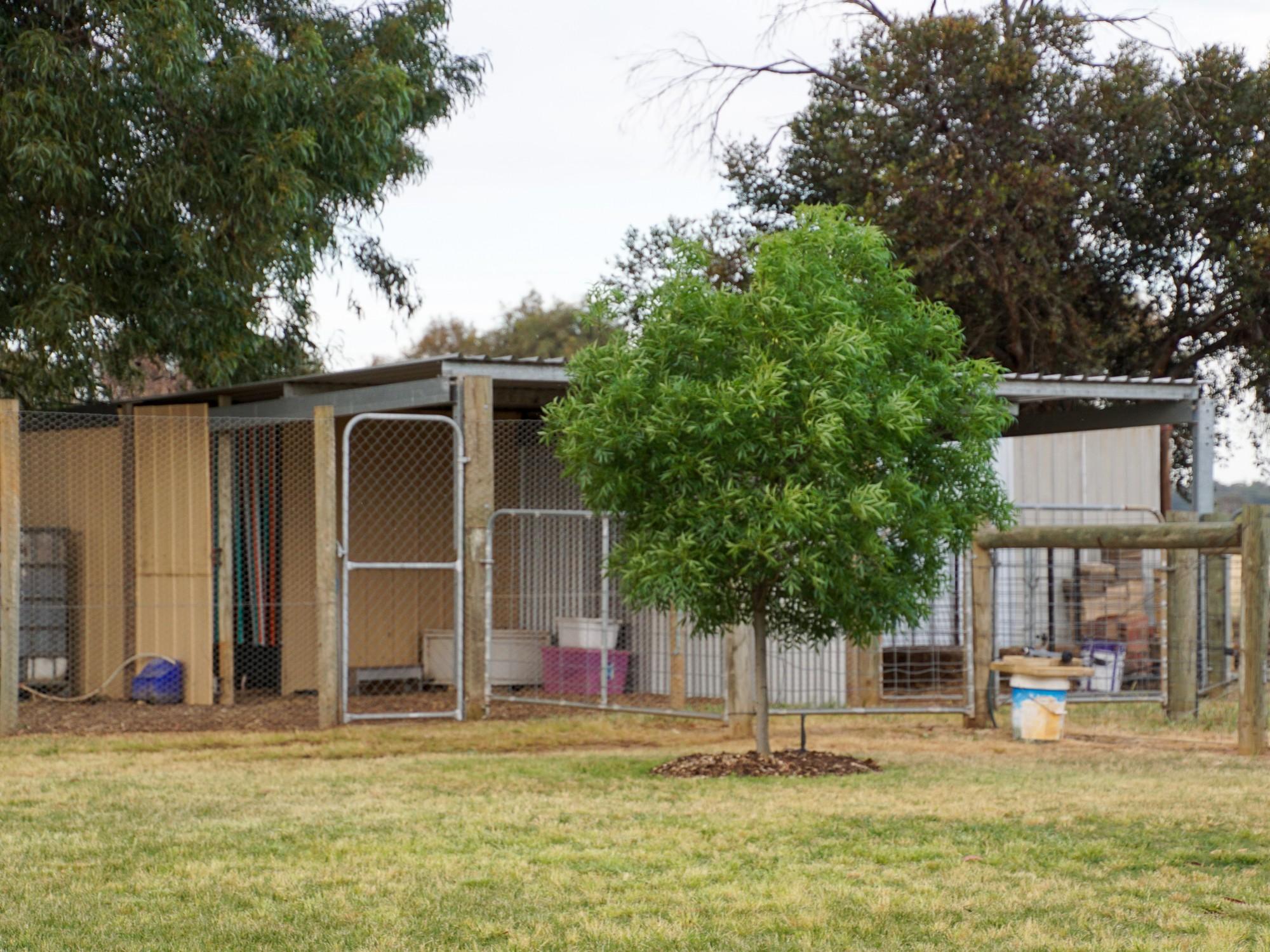 Property For Sold 103 Barnes Road Cobram East VIC 3644 14