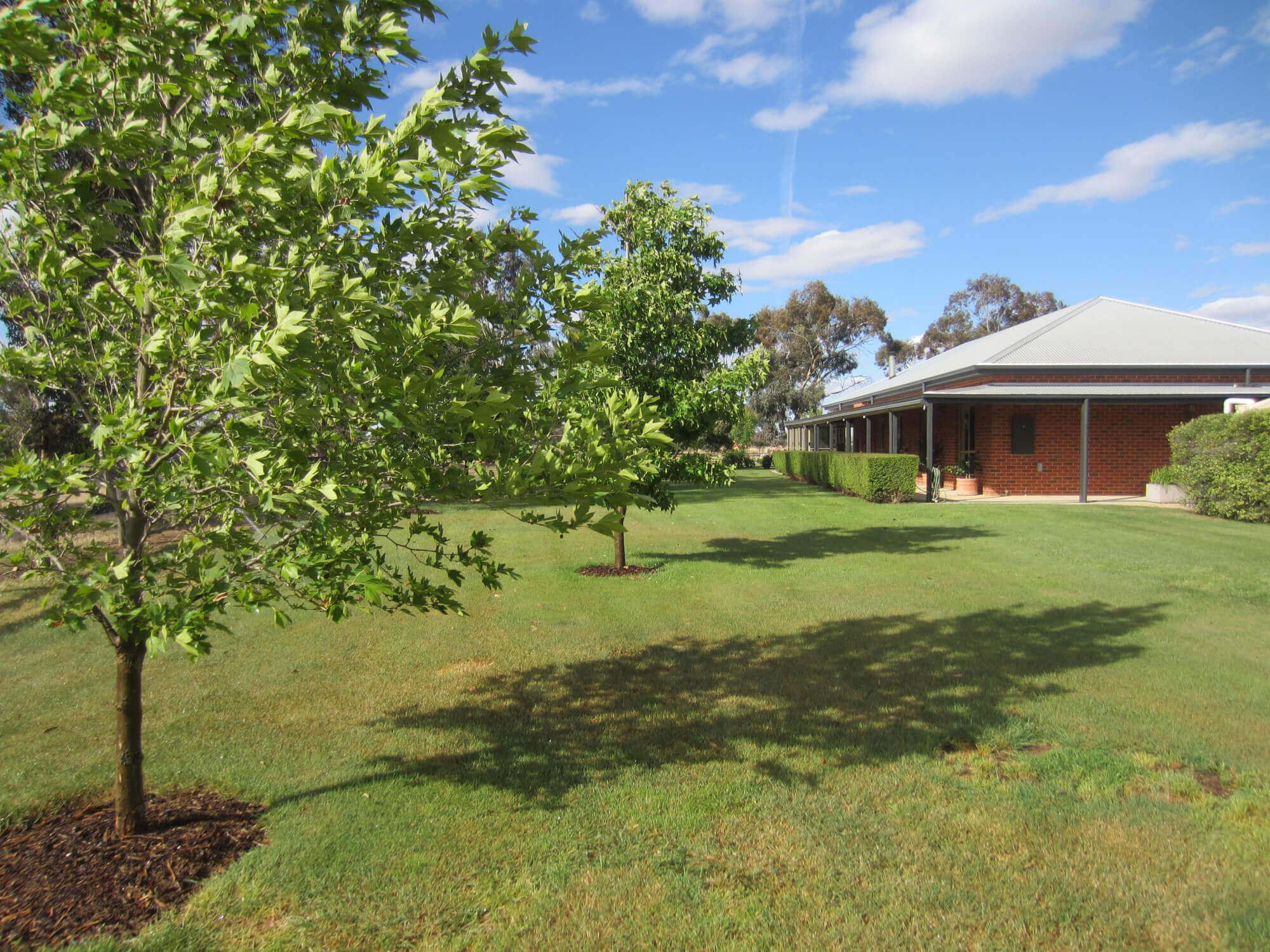 Property For Sold 103 Barnes Road Cobram East VIC 3644 1