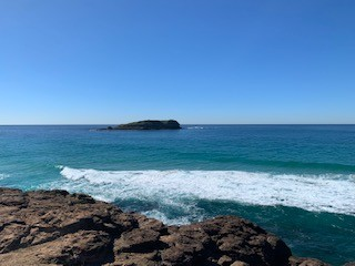 Private Business For Sale Fingal Head 2487 NSW 32