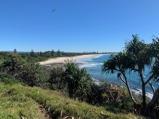 Private Business For Sale Fingal Head 2487 NSW 34