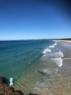 Private Business For Sale Fingal Head 2487 NSW 33