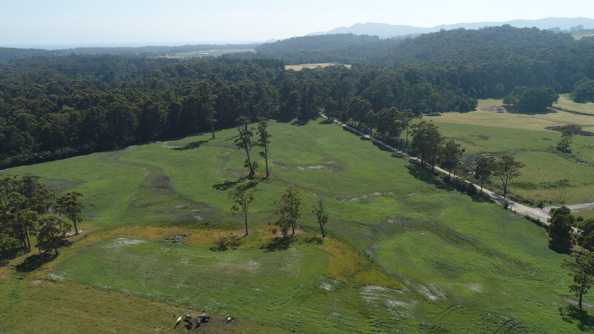 Property For Sale 300 Coopers road Rocky Cape TAS 7321 5