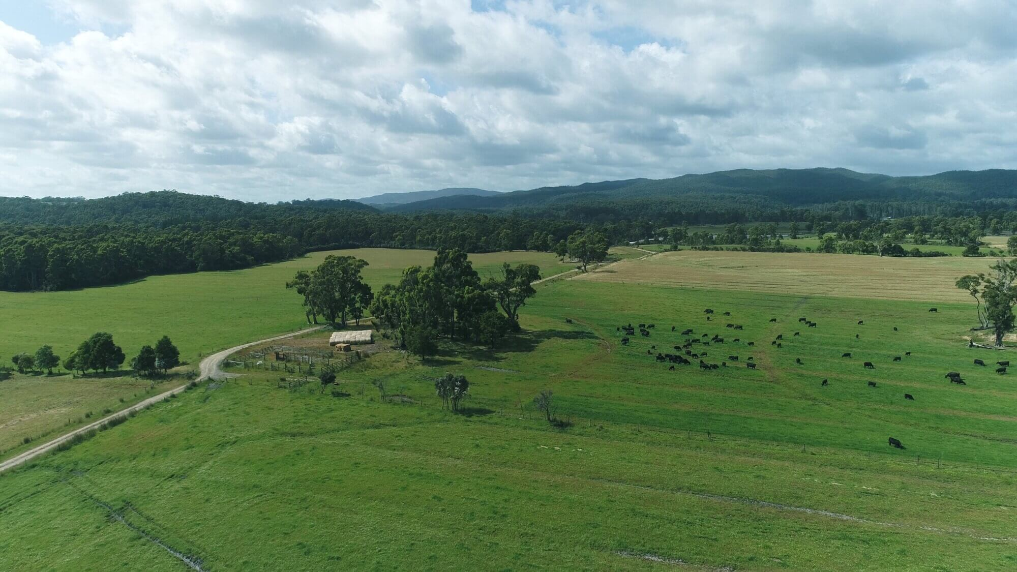 Property For Sale 300 Coopers road Rocky Cape TAS 7321 12