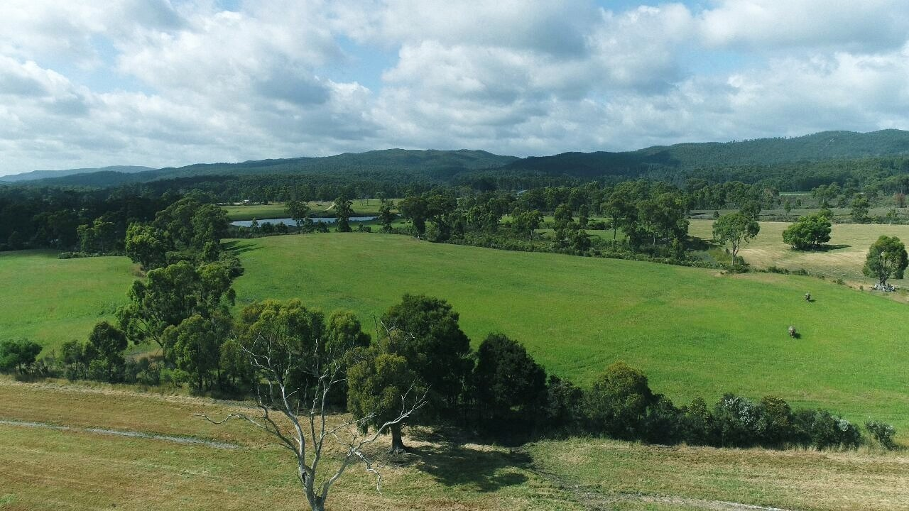 Property For Sale 300 Coopers road Rocky Cape TAS 7321 13