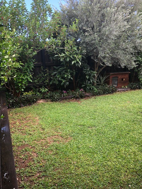 Property For Sale 5 Tribeca Circuit North Lakes QLD 4509 3
