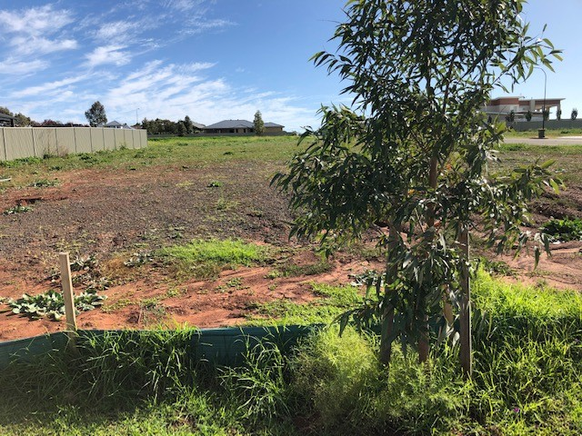 Property For Sale 7 Cavelle Drive Dubbo NSW 2830 4