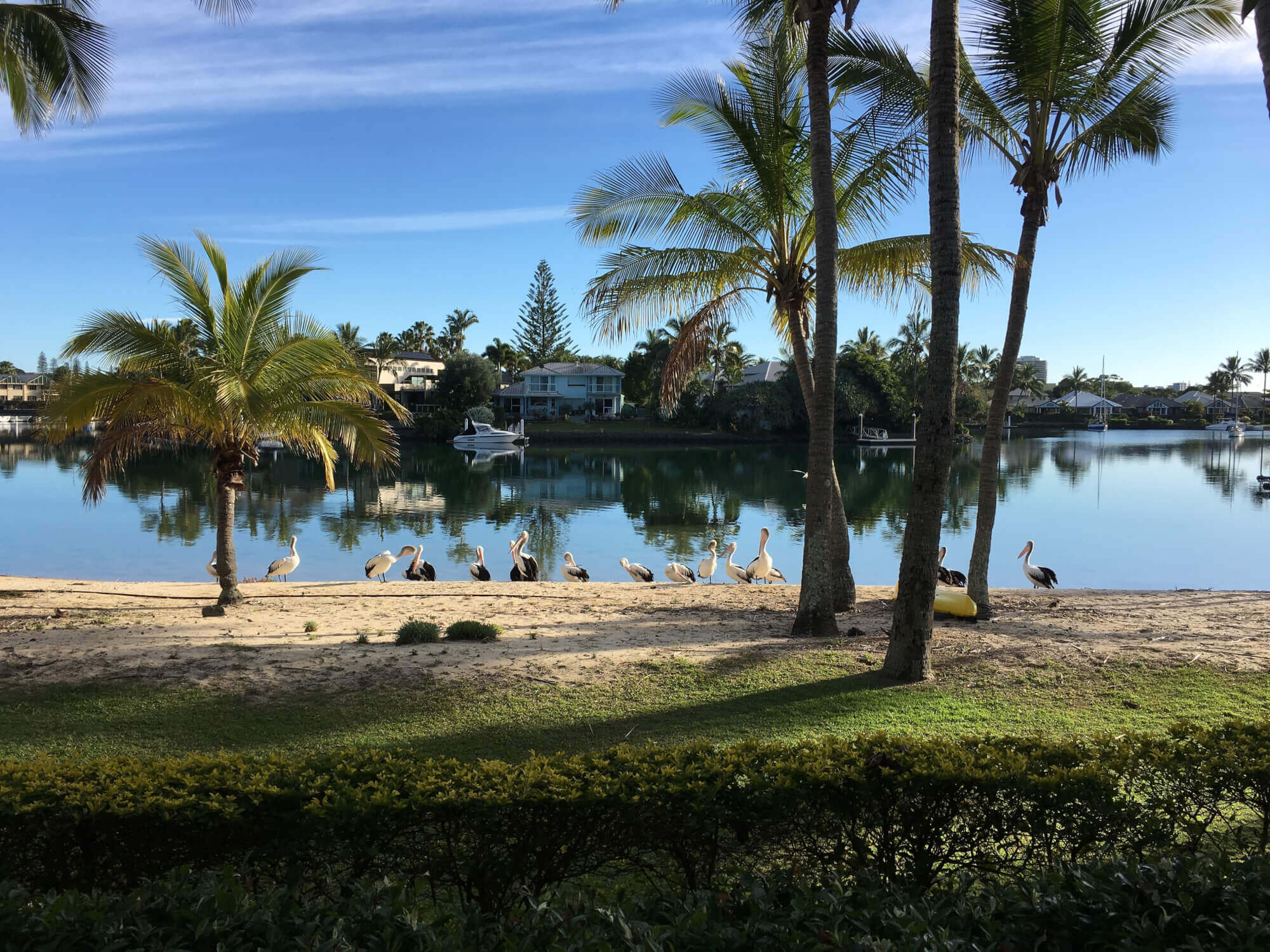 Property For Sold 29/5 Island Drive Tweed Heads NSW 2485 12