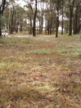 Property For Sale Maryborough 3465 VIC 5