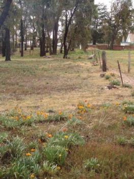 Property For Sale Maryborough 3465 VIC 6