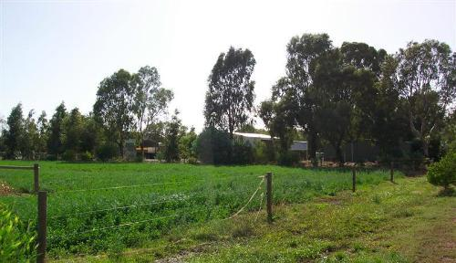 Property For Sale Kyabram 3620 VIC 12