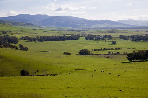 Property For Sold Corryong 3707 VIC 8