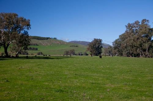 Property For Sold Corryong 3707 VIC 9