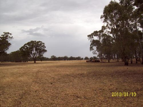Property For Sale Yabba South 3646 VIC 8