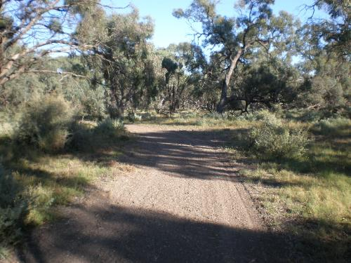 Property For Sold Swan Hill 3585 VIC 5