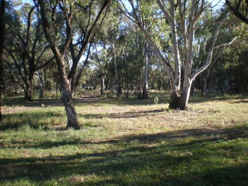 Property For Sold Swan Hill 3585 VIC 8