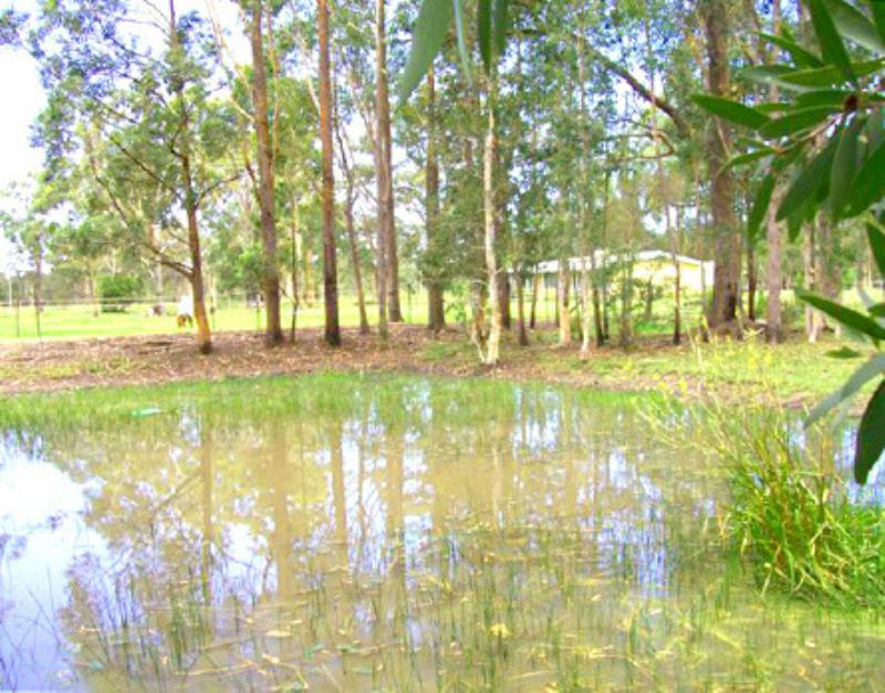 Property For Sale Johns River 2443 NSW 4