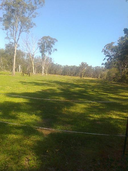 Property For Sale Johns River 2443 NSW 6