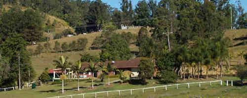 Property For Sale Kyogle 2474 NSW 9