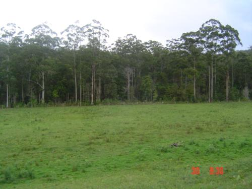 Property For Sold Port Macquarie 2444 NSW 2