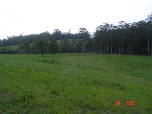 Property For Sold Port Macquarie 2444 NSW 3