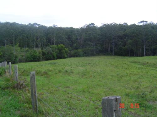 Property For Sold Port Macquarie 2444 NSW 8