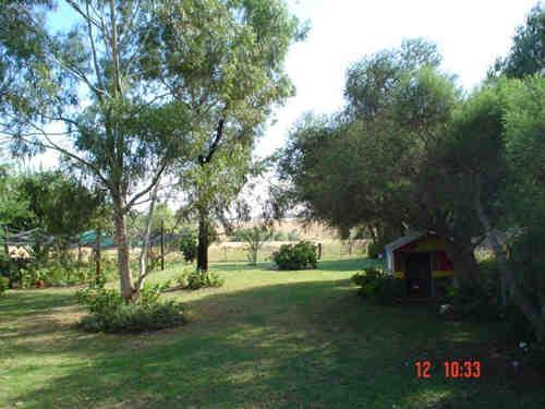 Property For Sale Delungra 2403 NSW 3