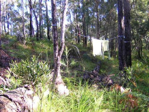 Property For Sold Long Beach 2536 NSW 2